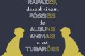 Portuguese Flashcards